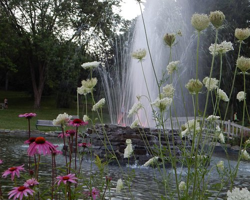 Blooms around the fountain