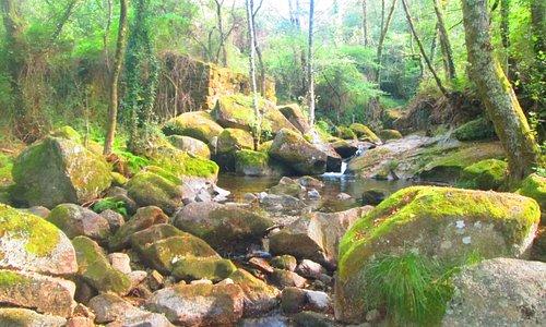 O Rio Vizela recortando a serra dentre os Penedos