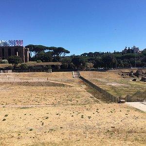 Views over Circo Massimo