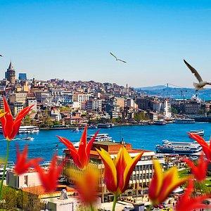www.istanbuldaily-citytours.com