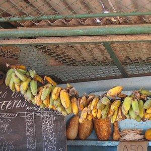 Hatibonico market