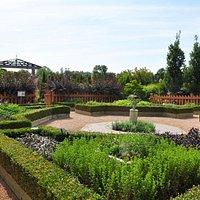Herb Garden summer