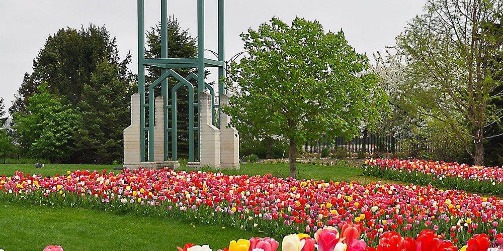 Campanile Garden spring