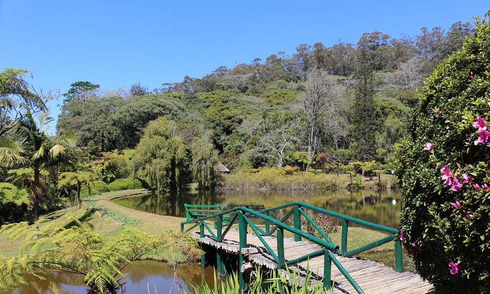 A bridge over the main pond to access one of the other areas