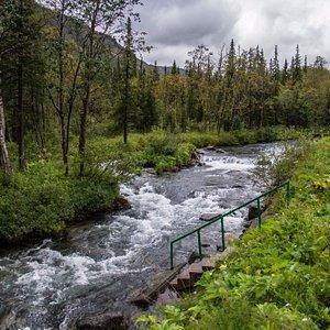 Речка, которая является естественной границей заповедной территории