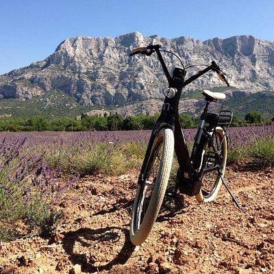 Circuits à vélos électriques en Provence