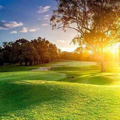 Darwin Golf Club