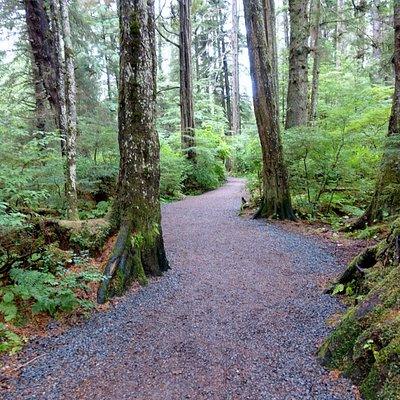 Forest walk at Sitka National Historical Park