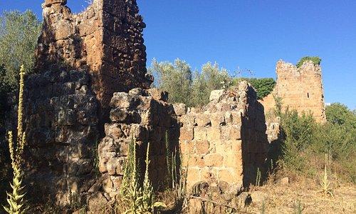 Il castello dei Di Vico nell'acropoli