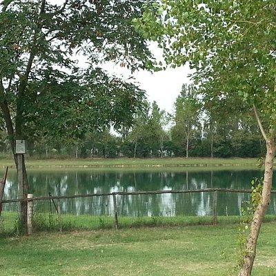 Il lago nel parco