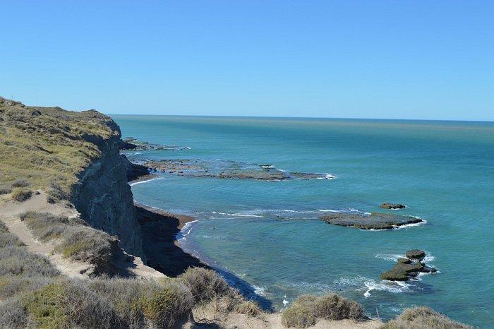 La loberia de Punta Bermeja