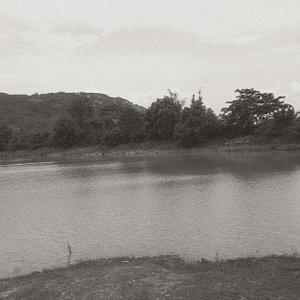 its dry thattekere lake