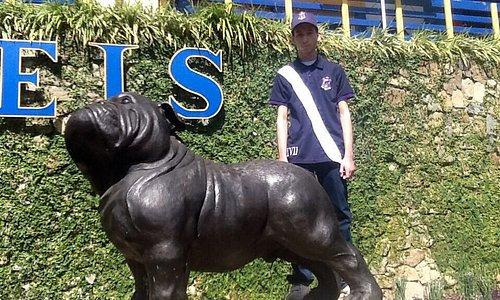 At the bulldog (school's mascot) plaza
