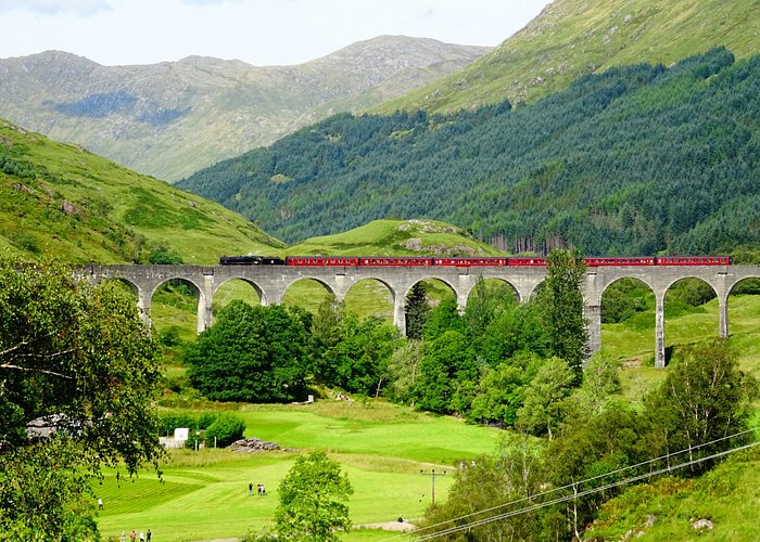 Viaduct and steam train