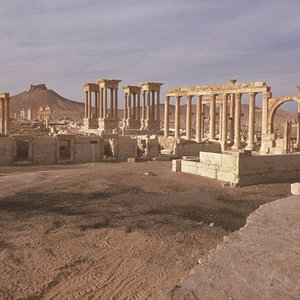 Side of Palmyra