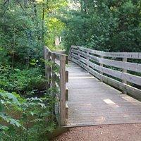 Green Circle Trail