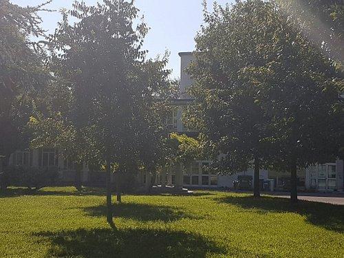 Parco Di Villa Finzi