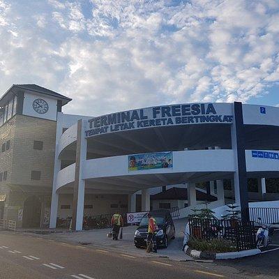 @ Terminal Freesia