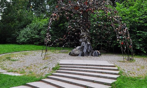 вид дерева с тропинки сквера