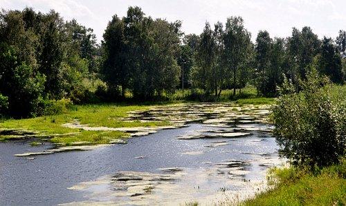 Река Ворожа