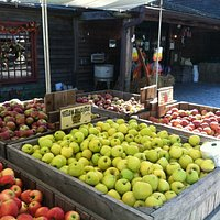 Fall apples!