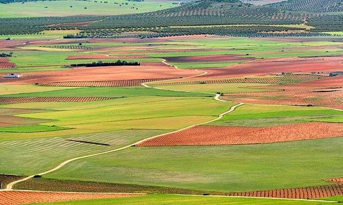 Vista de La Mancha desde Consuegra (Toledo)