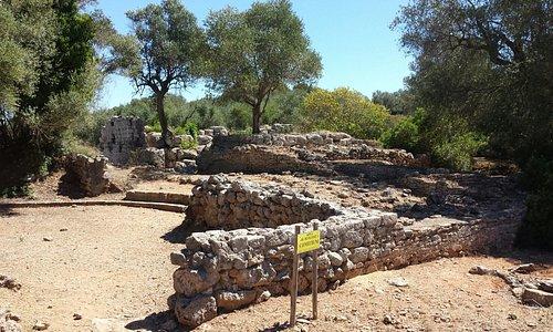 Museo Archeologico Nazionale di Cosa