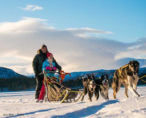 Beautiful track across the frozen lake