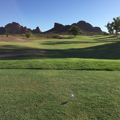 Nice view of the Papago