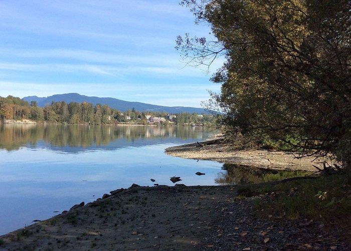 Fraser River view from Derby Reach Regional Park