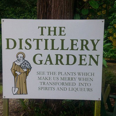 The Distillery Garden from where pure botanicals are hand-picked.