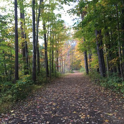 trails in early fall
