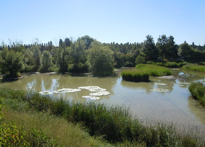 Les Marais