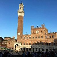 Iconic symbol of Siena