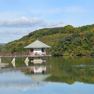 山田池~Yamadaike Pond~