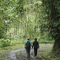 Reserva Buenaventura Jocotoco, Provincia de el Oro, Piñas Ecuador
