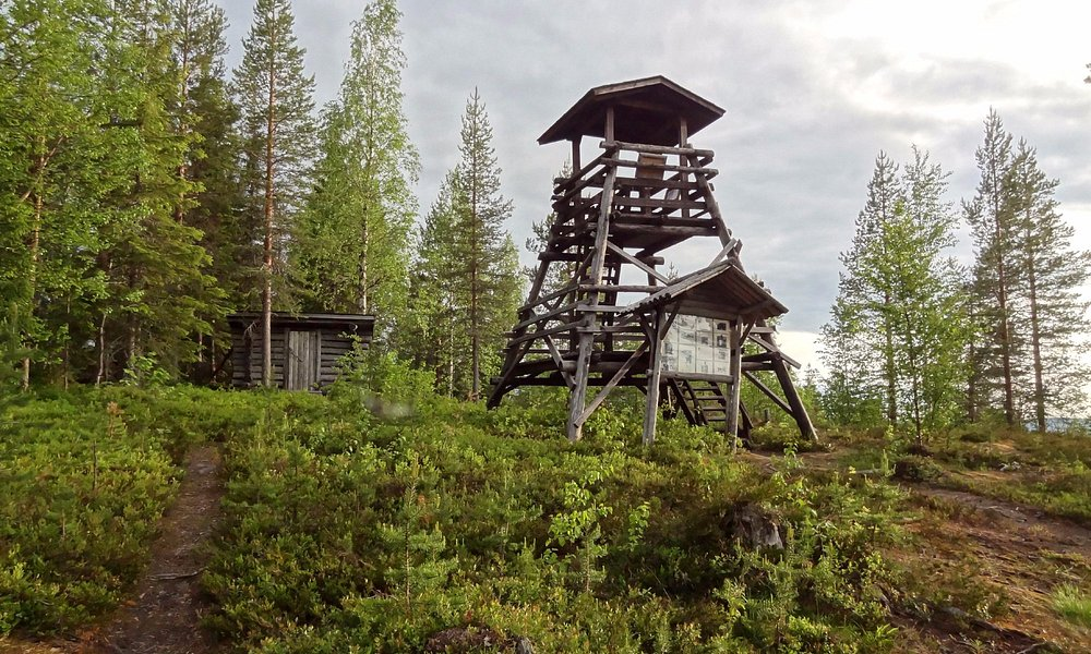 View from the top of the Eero Trail in Pello in Lapland