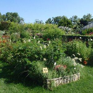 jardin de l'école du Breuil productions saisonnières Florales