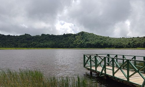 Grand Etang Lake (made from volcanic crater!)