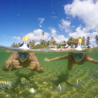 Mergulho Easy + Fotos na Praia do Forte