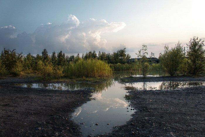 """Die Teiche werden auch """"Himmelsspiegel"""" genannt."""