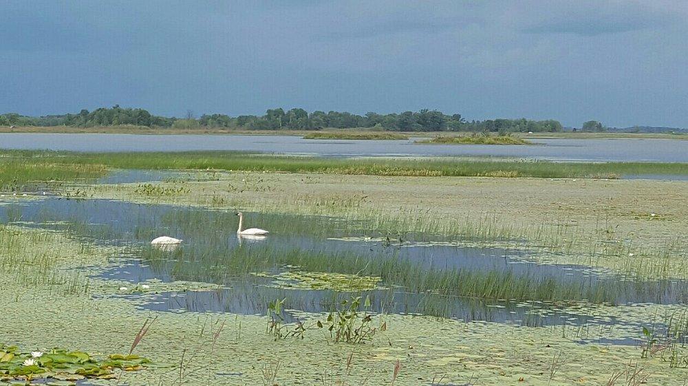 Crex Meadows Wildlife Area