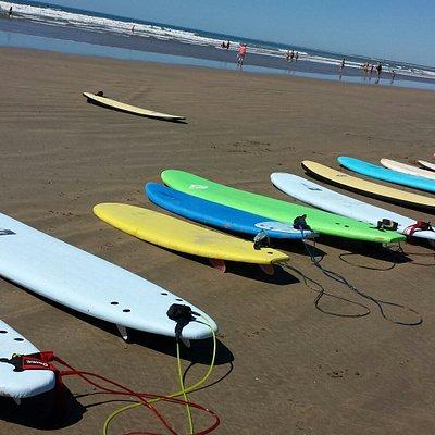 Les Surfs de Moana