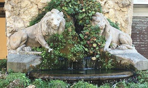 Fontana dei due Leoni