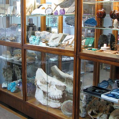 Mineral & Fossil Specimens