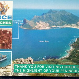Hilight of the Cape Town - Day Tour.