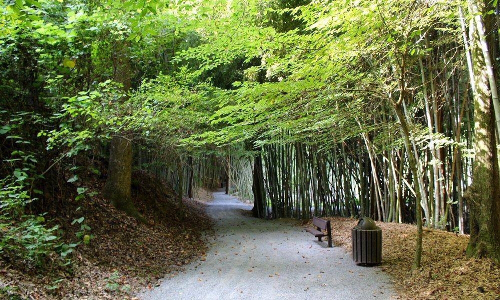 Wilderness Park entry path