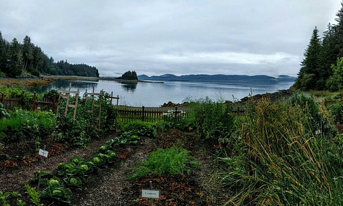 Vegetable garden looks out onto the ocean