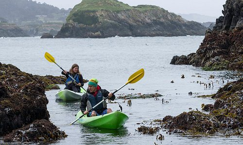 Paddle your own... sea kayak!