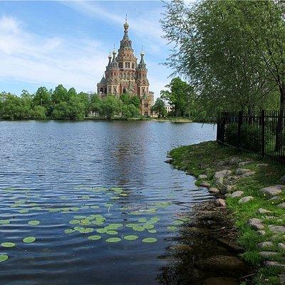 На берегах Ольгиного пруда